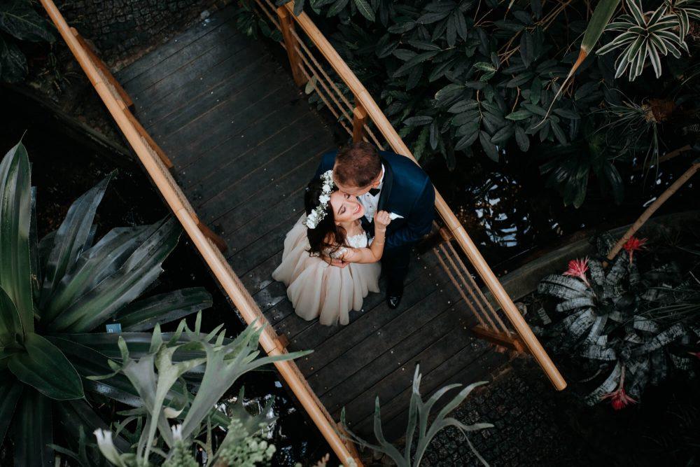 Sesja ślubna w Palmiarni, zdjęcie z góry